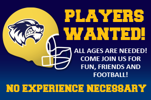 Wolverines Youth Football Club Players Wanted