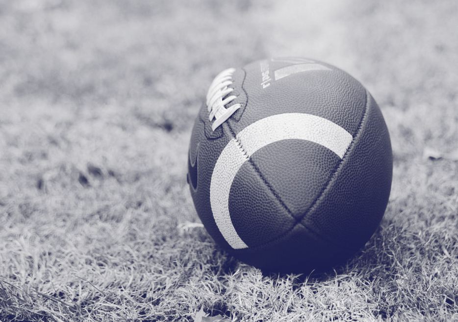 West Carleton Wolverines Youth Football Club